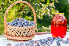 Compote home canning and basket with plums Stock Images
