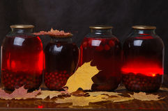Compote from red berries Stock Photos