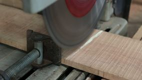 Compound miter saw cutting wood plank in carpentry workshop.  stock footage