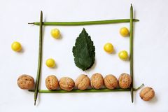 Compozition from leaves and fruits Royalty Free Stock Photography