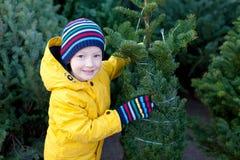 Compra da árvore de Natal Imagens de Stock Royalty Free