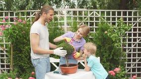 Compra da mãe e do rapaz pequeno no centro de jardinagem vídeos de arquivo