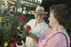 Compra sênior dos pares para flores Imagem de Stock