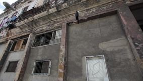 Compras de la calle en La Habana, Cuba metrajes