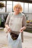 Compras maduras de la mujer para las verduras frescas Fotografía de archivo libre de regalías