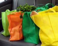 Compras respetuosas del medio ambiente Imagen de archivo libre de regalías