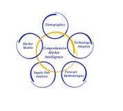 Comprehensive Market Intelligence Royalty Free Stock Images