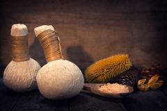 Compresa herbaria del masaje Imagenes de archivo