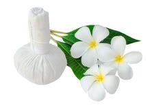 Compresa herbaria tailandesa para el balneario con el frangipani Fotografía de archivo
