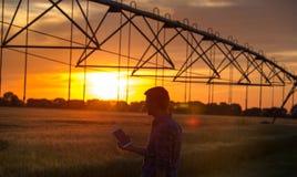 Compressa della tenuta dell'agricoltore nel campo al tramonto Immagini Stock