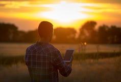 Compressa della tenuta dell'agricoltore nel campo al tramonto Fotografia Stock Libera da Diritti