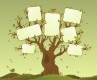 Compresse in bianco su un albero Immagine Stock
