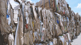 Compressed cardboard - recycling manufactory, close up Stock Photos