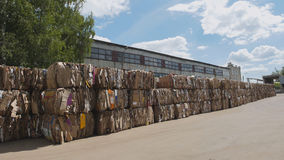 Compressed cardboard on the territory plant of the recycling in bales, perspective view Royalty Free Stock Image