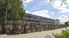 Compressed cardboard on the territory plant of the recycling in bales, perspective view Stock Images