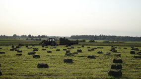 Compressed hay bales Royalty Free Stock Photos