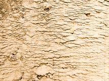 Compressed Sand Texture. On a construction site. Useful as background of bump texture for 3d rendering. Copy space stock images