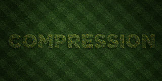 COMPRESSION - fresh Grass letters with flowers and dandelions - 3D rendered royalty free stock image. Can be used for online banner ads and direct mailers Stock Photos
