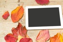 Comprimé de Digital et feuilles d'automne sur le fond en bois Photographie stock libre de droits