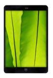 Comprimé noir avec le mur vert de feuille Photo libre de droits
