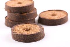 Comprimés de noix de coco pour l'élevage Photos stock