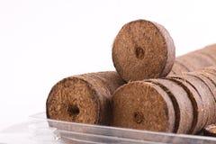 Comprimés de noix de coco pour l'élevage Photographie stock libre de droits