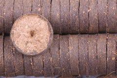 Comprimés de noix de coco pour l'élevage Photographie stock