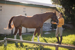 Comprimento completo do jóquei fêmea com o cavalo que está no campo no celeiro fotos de stock royalty free