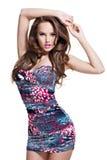 Comprimento completo do modelo 'sexy' da forma que levanta na mini saia imagens de stock royalty free