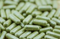 Comprimidos da cápsula de moringa do grupo Fotografia de Stock