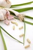 Comprimidos do alho Foto de Stock
