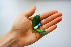 Comprimidos ervais Fotografia de Stock