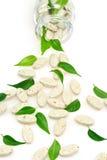 Comprimidos ervais do suplemento e derramamento fresco das folhas Imagem de Stock Royalty Free