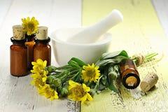 Comprimidos homeopaticamente da arnica imagem de stock royalty free