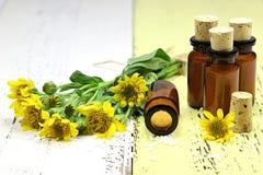 Comprimidos homeopaticamente da arnica foto de stock