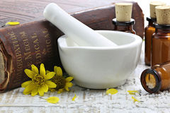 Comprimidos homeopaticamente da arnica imagens de stock