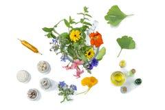 Comprimidos médicos orgânicos com a planta erval em motar no fundo branco conceito do ethnoscience Vista superior fotos de stock royalty free