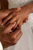 Comprometimento do noivo Imagem de Stock Royalty Free