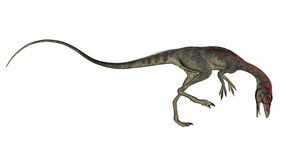Compsognathus dinosaur walking - 3D render royalty free illustration