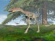 Compsognathus dinosaurie - 3D framför Royaltyfria Bilder