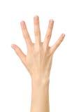 Compte de main Cinq doigts D'isolement photographie stock libre de droits