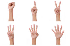 Compte de main les mains de femme montrent le numéro zéro, un, deux, trois, quatre, cinq Photos libres de droits