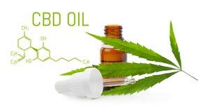 Compte-gouttes avec de l'huile de CBD La bouteille de cbd de cannabis a isolé Feuille de chanvre Concept médical de marijuana photo libre de droits