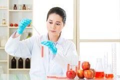 Compte-gouttes d'utilisation de scientifique pour examiner la nourriture génétique de modification image stock