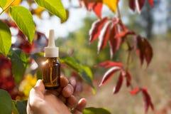 Compte-gouttes de bouteille avec l'essence d'echinacea photographie stock libre de droits