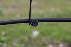 Compte-gouttes pour l'irrigation efficace photo libre de droits