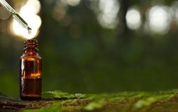 Compte-gouttes pour la bouteille d'huile essentielle images libres de droits