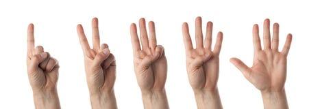 Compte mâle de mains d'isolement sur le blanc Photographie stock