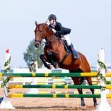 Compétitions sportives équestres. Photo stock