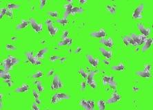 Compuesto del palomas blancas hermosas en vuelo sobre fondo verde stock de ilustración
